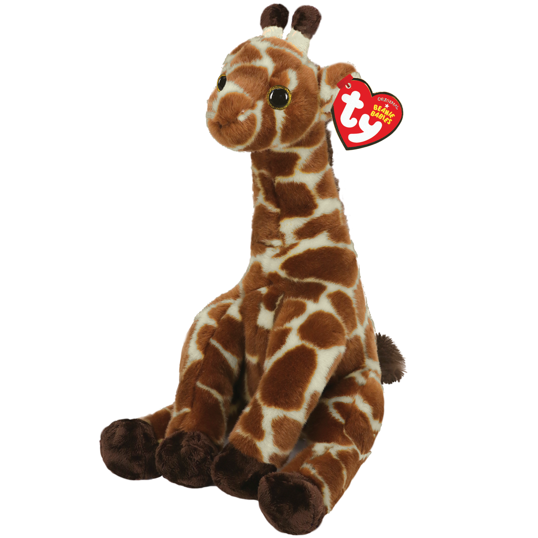Gavin - Brown Spotted Giraffe